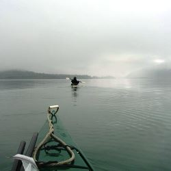 kayak in fog
