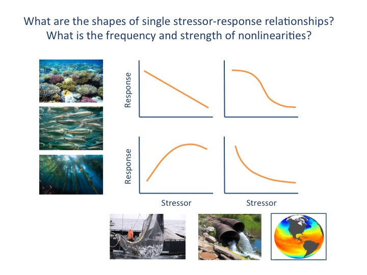 stressor-ecological component relationships
